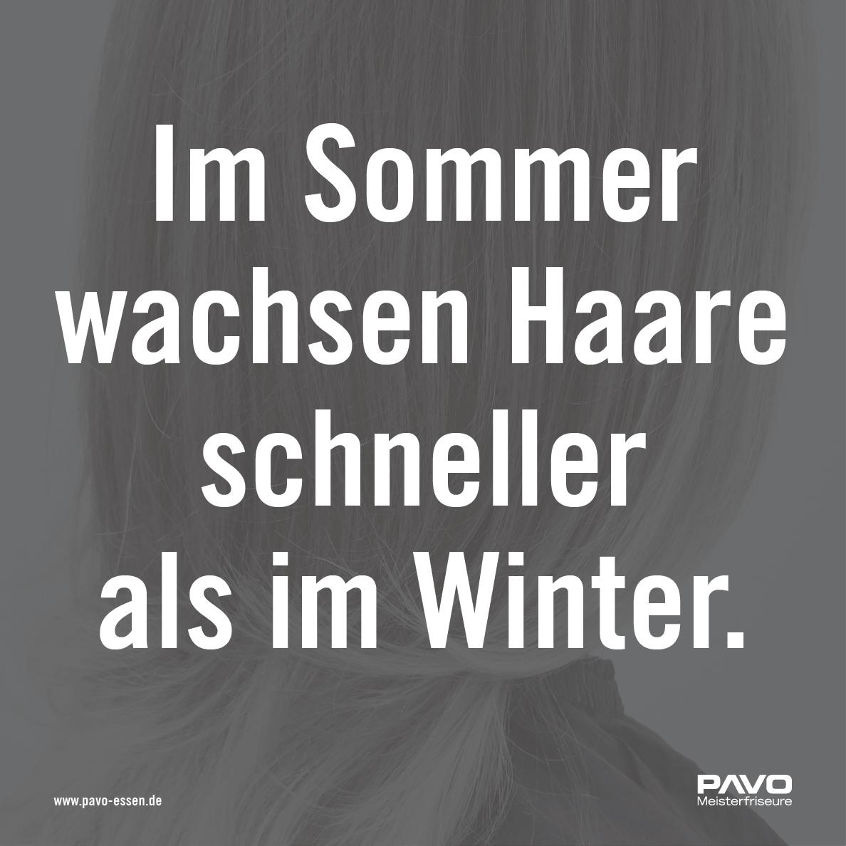 Fact Friday — Im Sommer wachsen Haare schneller als im Winter